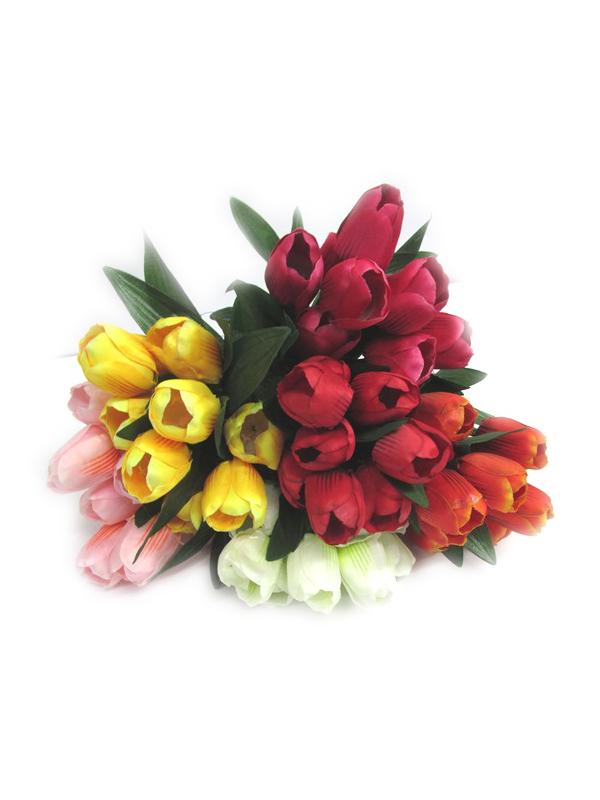 Image of Bunch Of Tulips Pk24 Md3709