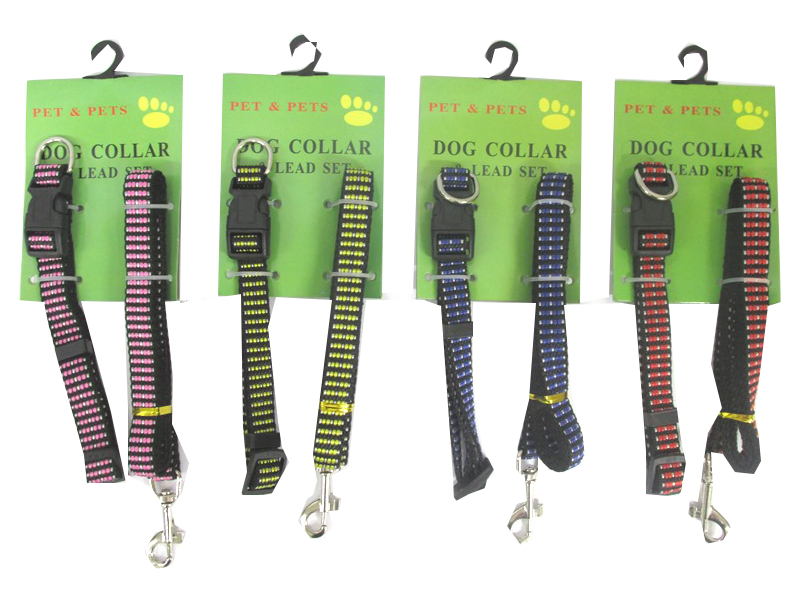 Image of Dog Collar & Lead Set Pk24 Md4040 Small